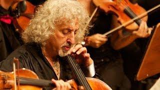 beethoven triple concerto maisky   videnoff   mannheimer philharmoniker