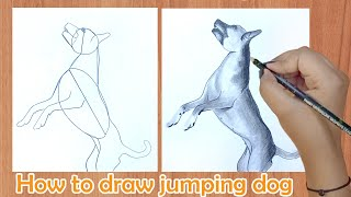 How to draw jumping dog
