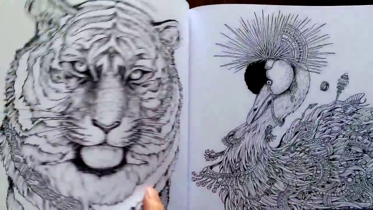 Imagimorphia By Kerby Rosanes Adult Coloring Book