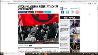 Scumbag Antifa Rioters Attack Car With Puppy Inside