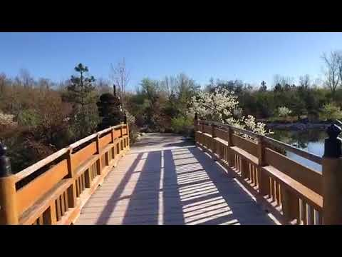 Meijer Gardens Japanese garden walkthrough
