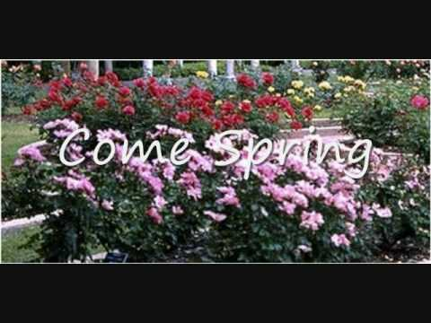 Come on spring!   HAHAHAHAHA   Pinterest