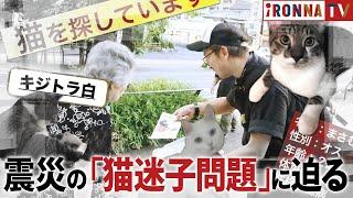 「飼い猫がいなくなった」。6月の大阪北部地震後、ツイッターには、行...