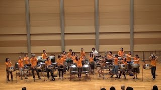 【PAN VILLAGE ORCHESTRA 2015】Signal For Lara/ Luv it / Tenor Bass