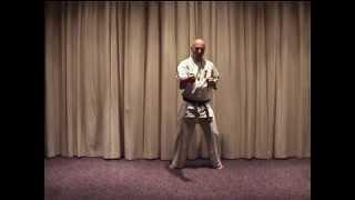 Hanshi Adámy István kyokushin karate technikák
