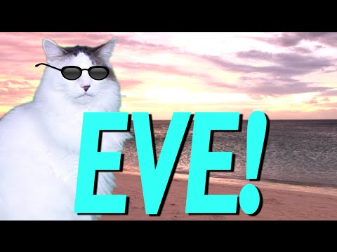 HAPPY BIRTHDAY EVE EPIC CAT Happy Birthday Song YouTube