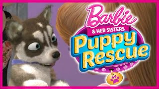 💫 Barbie and Her Sisters Puppy Rescue Care and Training Puppies Gameplay Part #3