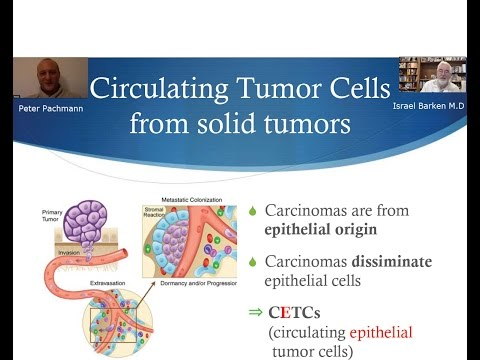 Circulating Epithelial Tumor Cells