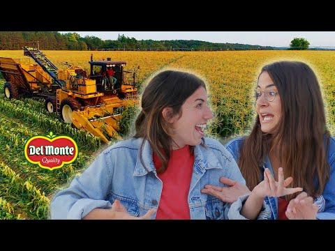 City Folk Work a Farm for a Day // Presented By BuzzFeed & Del Monte