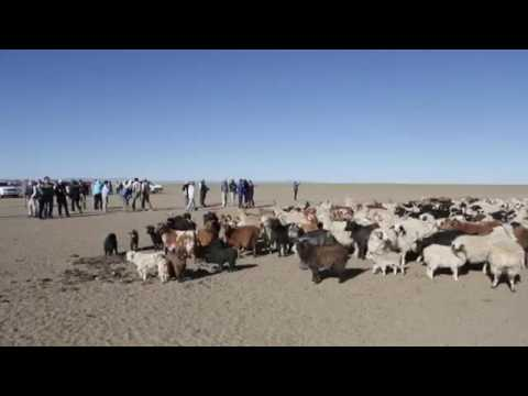 """A Look Back: Geoffrey Kent in Mongolia on """"The Tropics to the Arctic"""""""