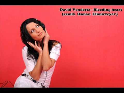 HOUSE MUSIC 2013 David Vendetta Bleeding Heart remix.wmv