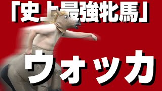 「第59回 安田記念のウォッカの馬群さばき」【ニルベース齋藤】