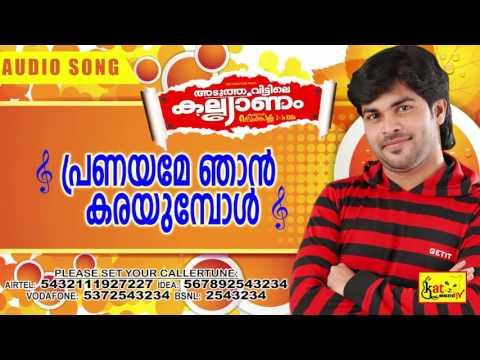 പ്രണയമേ ഞാൻ | Aduthaveettile Kalyanam | Hits Of Shafi Kollam | Romantic Mappila Album Song