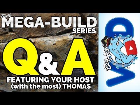 Mega-Build Q&A! | BigAlsPets.com