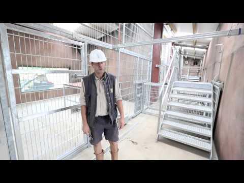 Folly Farm's Lion Enclosure