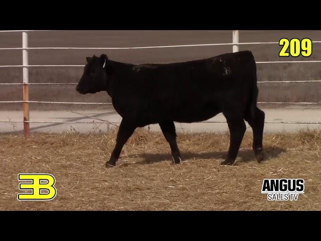 Benoit Angus Lots 209 - 210