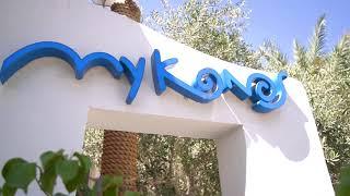 Greek Business Lunch at Mykonos