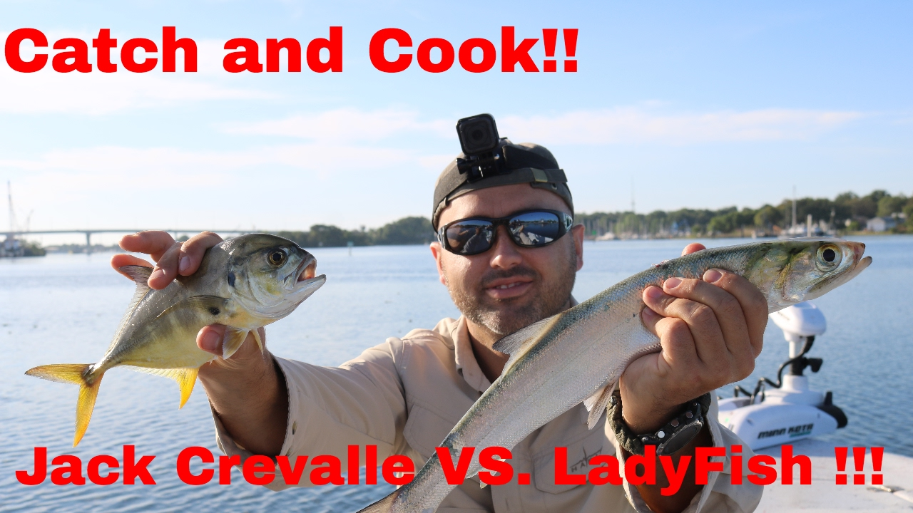 Catch and cook ladyfish vs jack crevalle youtube for Catch and cook fish