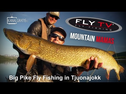 FLY TV - Mountain Mamas - Big Pike Fly Fishing in Tjuonajokk (Lapland, Sweden)