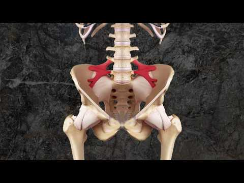 hqdefault - Iliolumbar Ligament And Back Pain