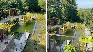 Couple's House Has Natural Swimming Pool In Garden