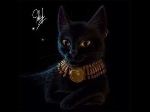 фото кот египетский