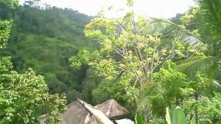 Bali tour of Ubud Hanging Gardens resort
