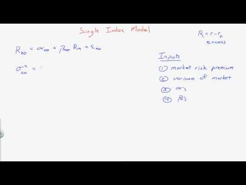 Single Index Model