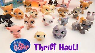 видео Игрушки для девочек линии Littlest Pet Shop