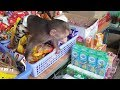 Baby Monkey | Doo's So Cute In The Grocery Store