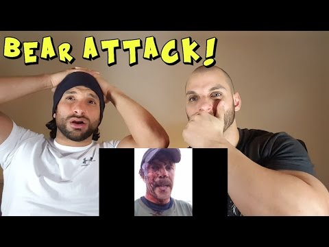 Grizzly Bear Attack [REACTION]