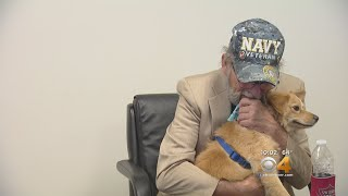 Veteran Plans To Sue RTD After Heated Argument Over Service Dog