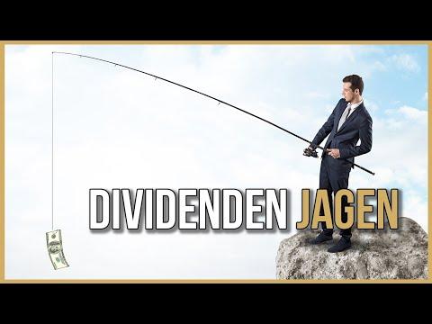 Begeben Sie sich auf Dividendenjagd! Passives Einkommen mit Aktien einfach erklärt