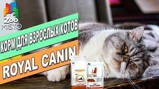 Корм для кошек Роял Канин Сеньор Стейдж 2 | Обзор корма | Royal Canin Senior Consult review