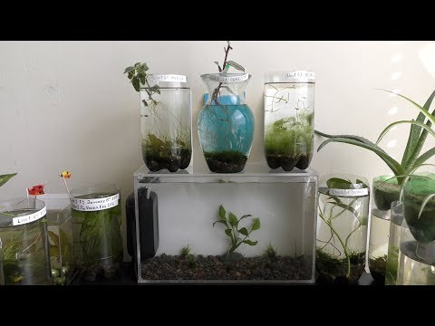 HD Aquarium DIY