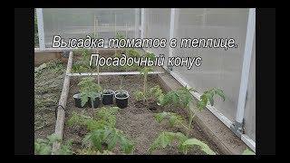 высадка томатов в теплице  Посадочный конус
