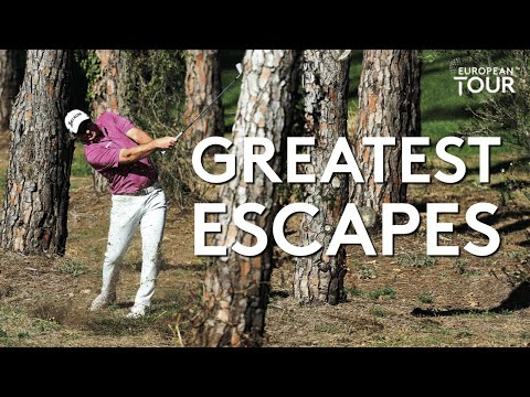 Greatest Escapes Of The Season (so Far) | Best Of 2020