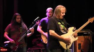 WALTER TROUT We 39 re All In This Together