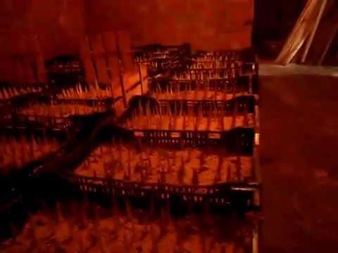 21 фев 2016. Тюльпаны к 8 марта от производителя. Опт, розница. Принимаем заказы на срезку тюльпанов. Двадцать сортов: красный, желтый, белый и др. Barcelona, happy generation, dinasty, hakuun, jan van nes, strong gold, verandi, vania и другие. Высота от 50 см. Высота бокала 5-10 см.