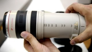 Canon 100-400mm f/4.5-5.6 IS USM 'L' lens review with samples (APS-C and full-frame)