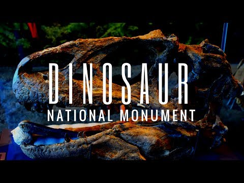 RV Travel Life | Dinosaur National Monument & Freemont Culture Petroglyphs (Anasazi)