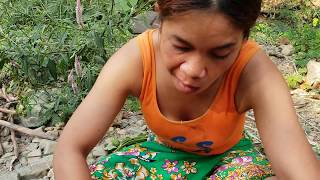 Survival Skills:finding & Snail  By Hand  -  And Cook  Eating Delicious #04