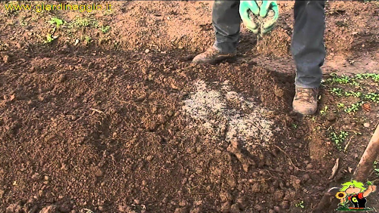 Terra Buona Per Giardino terriccio per orto - orto - terriccio più adatto per l'orto