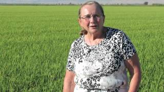 Family in California Rice farming