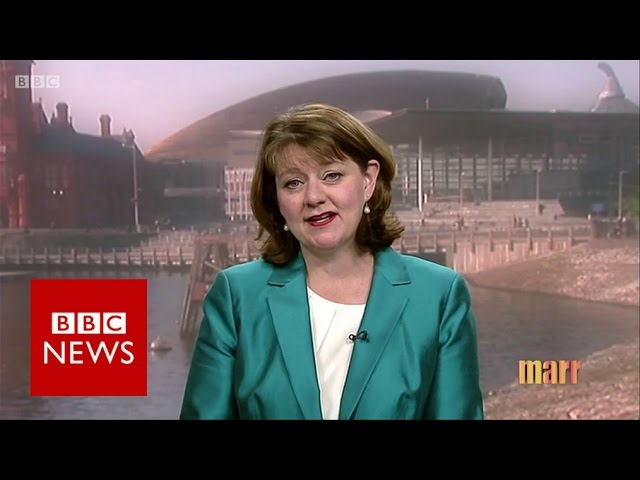 leanne-wood-on-brexit-and-general-election-bbc-news