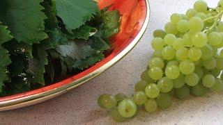 Виноградные листья замороженные
