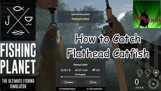 Fishing Planet: How-to Catch Flathead Catfish in North Carolina
