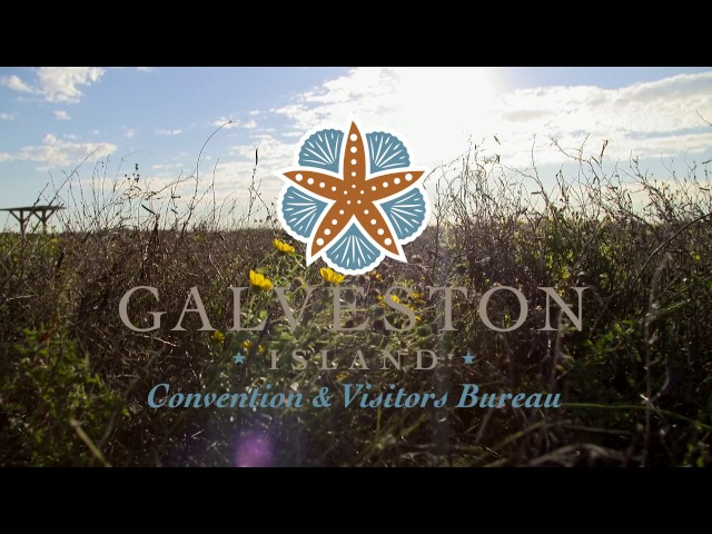 Why Galveston for your next event?  Hear from several event planners.