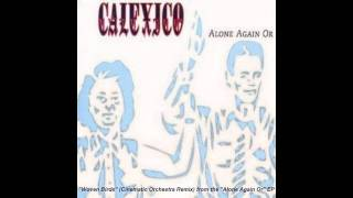 "Calexico ""Woven Birds"" (Cinematic Orchestra Remix)"