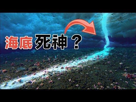 5個居然存在世界上的海洋奇觀